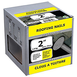Paulin 2-inch Roofing Nail-Hot Galvanized-1.5kg (approx. 350  pieces per package)