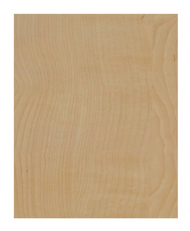 Replacement Panel 23 5/8 x 30 1/4 Veneer Natural