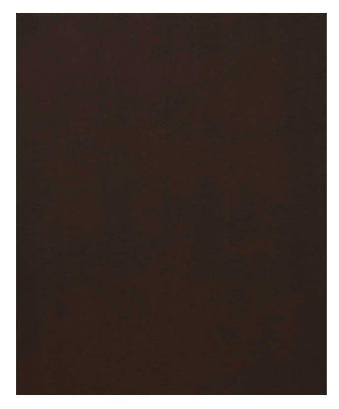 Panneau Lave-vaisselle 24 x 34 1/2 Plaqué Choco