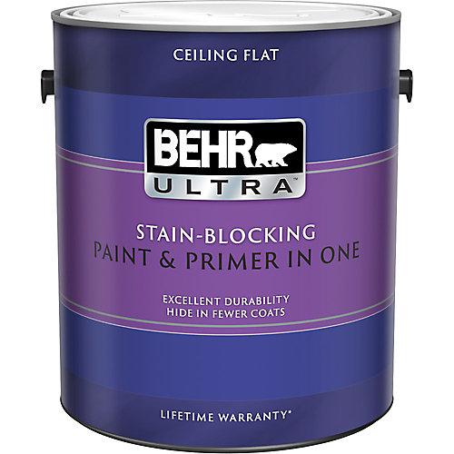 Behr Premium Plus Ultra Peinture  Apprt En Un  Peinture Pour