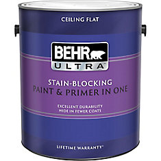 Stain Blocking Ceiling Paint Primer In One 3 79 L