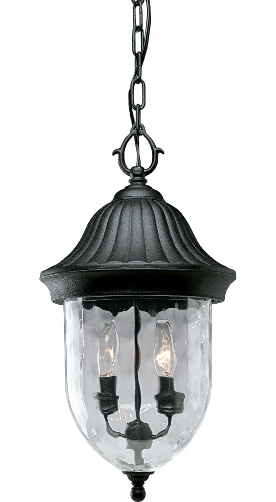 Coventry Collection Textured Black 2-light Hanging Lantern