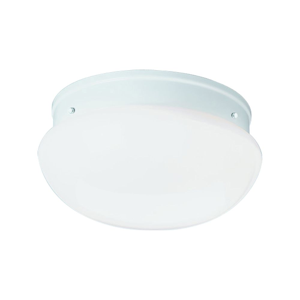 White 2-light Fluorescent Fixture