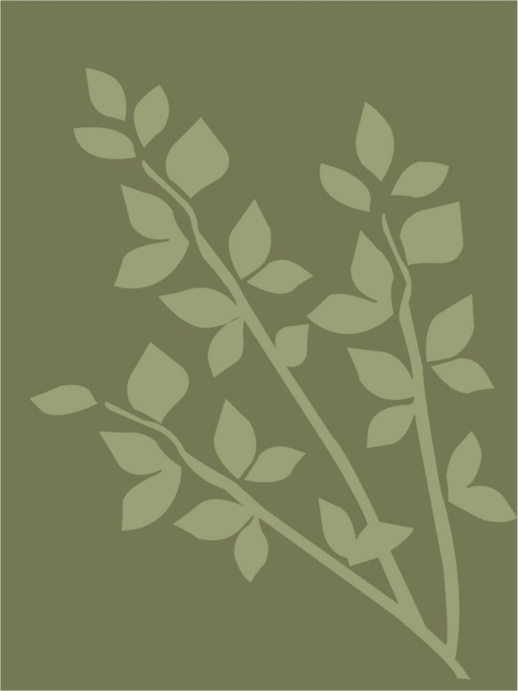 Gardenia - Olive 5pi. X 7pi.