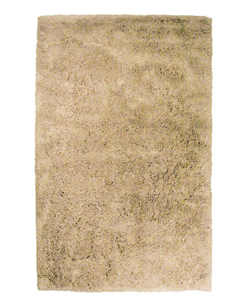 Beige kashmir shag 5 ft x 8 ft area rug kash58bg canada for Where to find inexpensive rugs