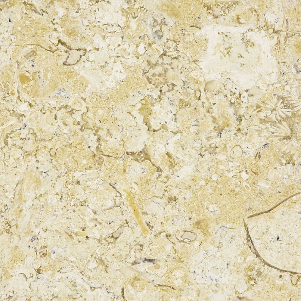 Honed Sahara Gold Limestone - 6 Inches x 6 Inches -( 5.5 Sq. Ft./Case)