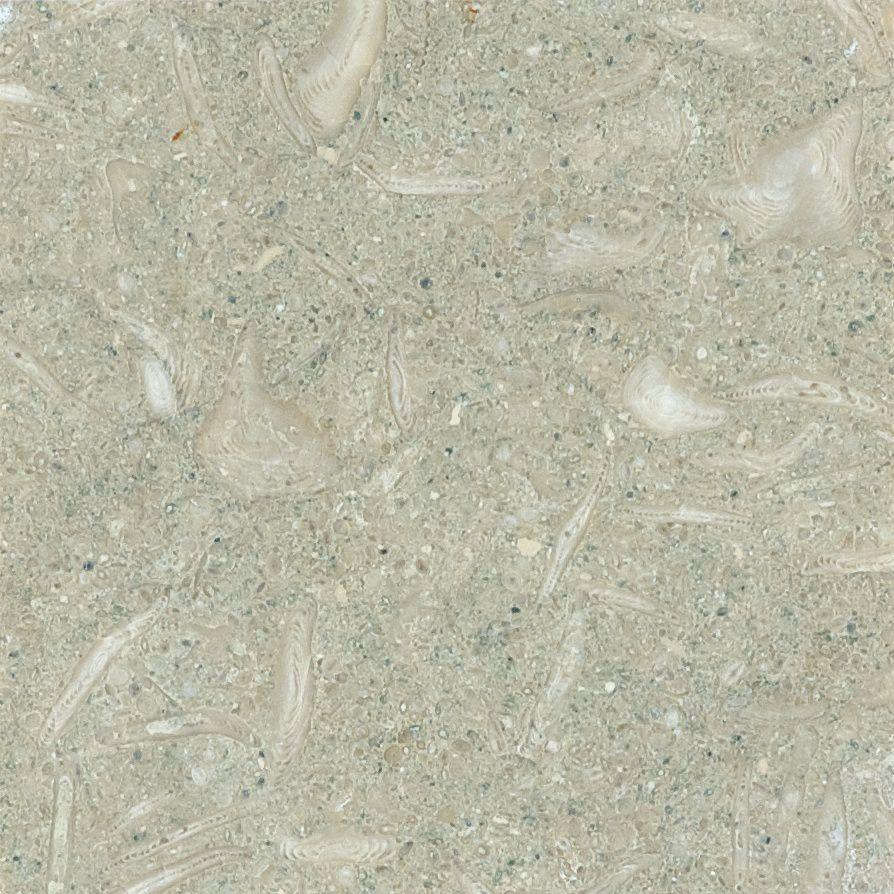 Calcaire Seagrass à finition mate de 6 po × 6 po -( 5,5 pi. carré par caisse)