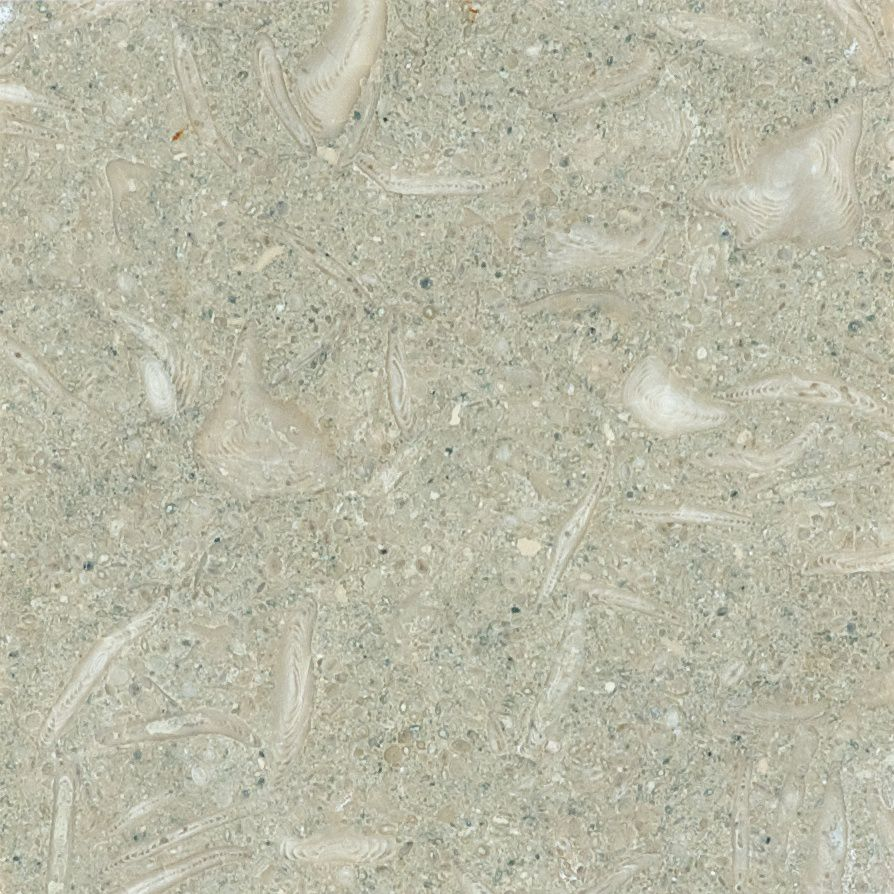 6-Inch x 6-Inch Honed Limestone Tile in Seagrass (5.5 sq. ft./case)