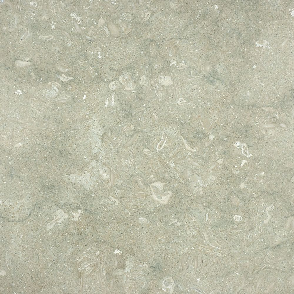 18-Inch x 18-Inch Honed Limestone Tile in Seagrass (9 sq. ft./case)