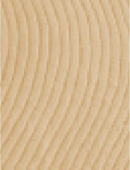 Sand Serenity 8 Ft. x 10 Ft. Area Rug
