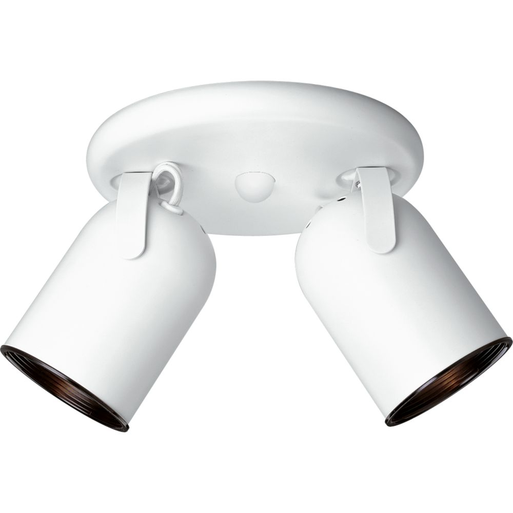 White 2-light Spotlight Fixture