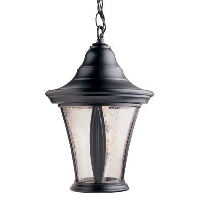 Orion Series, Black with Clear Bubble Globe, Suspended Chain Mount