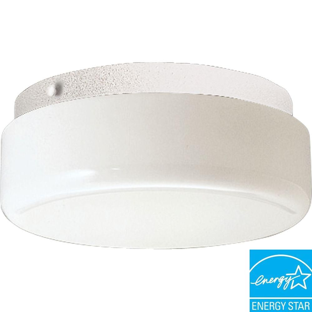 Hard-Nox Collection White 2-light Outdoor Flushmount