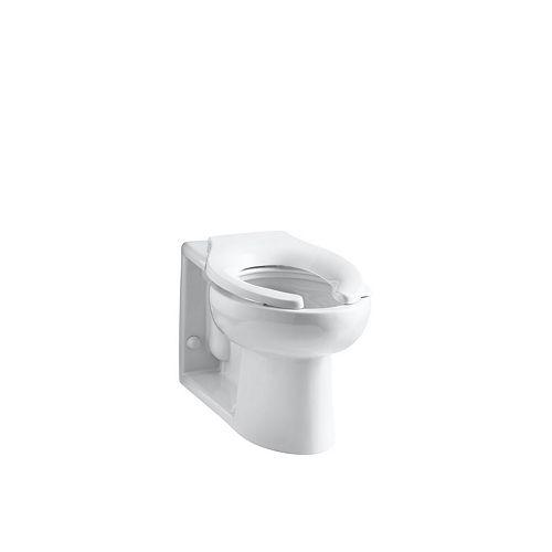 KOHLER Anglesey Elongated Bowl Toilet Bowl Only in White