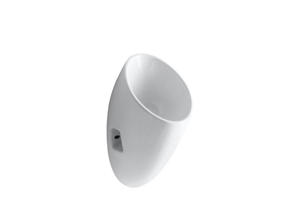 Steward S Waterless Urinal in White