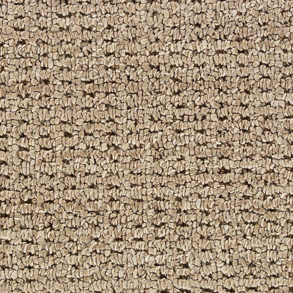 Slug Trail On Living Room Carpet: Martha Stewart Living Skylands Snail Shell Carpet