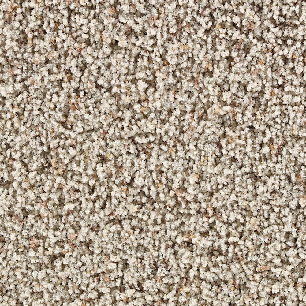 Slug Trail On Living Room Carpet: Martha Stewart Living Balmoral Snail Shell Tweed Carpet