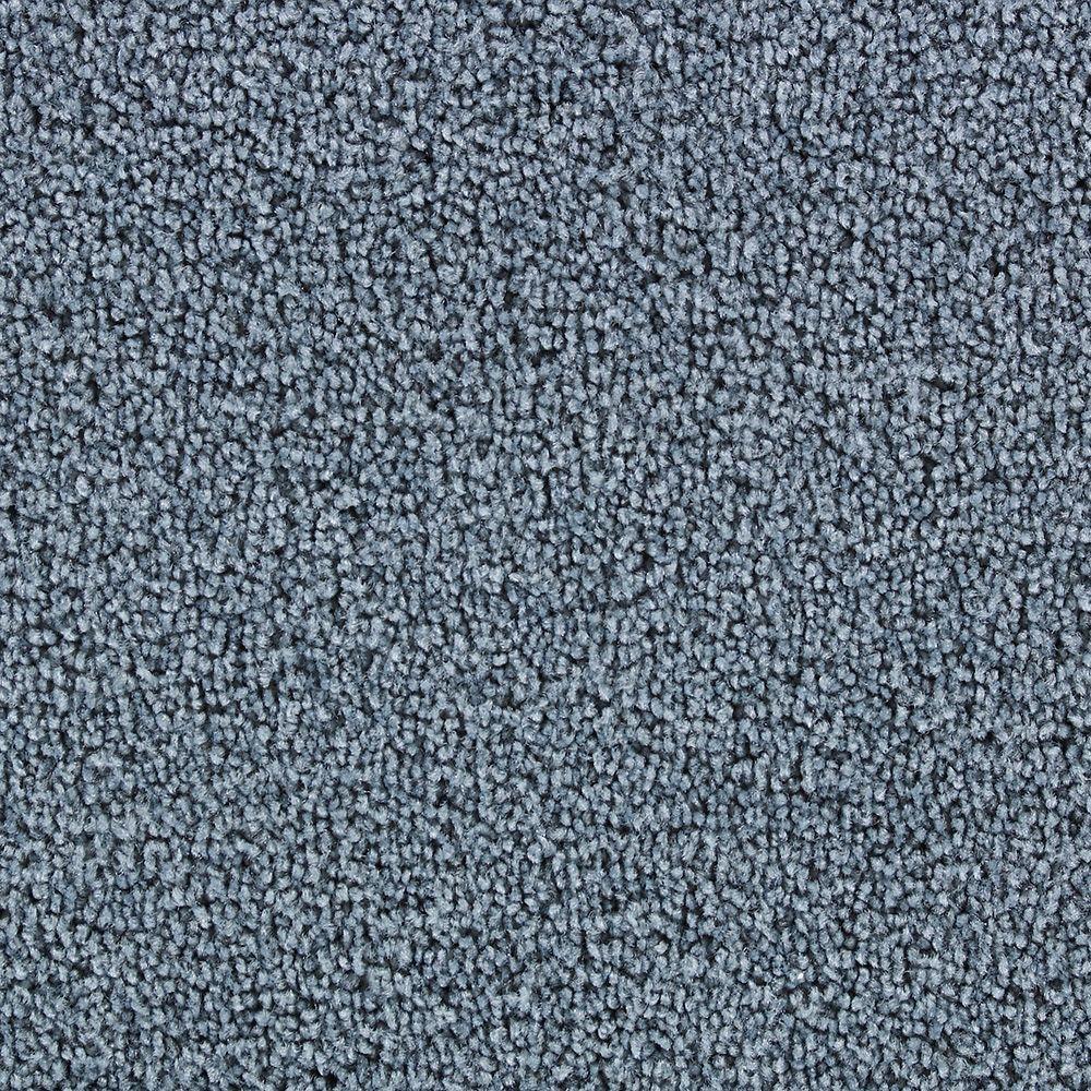 Beekman llTerrier kerry-blue-Tapis  - Par pi2