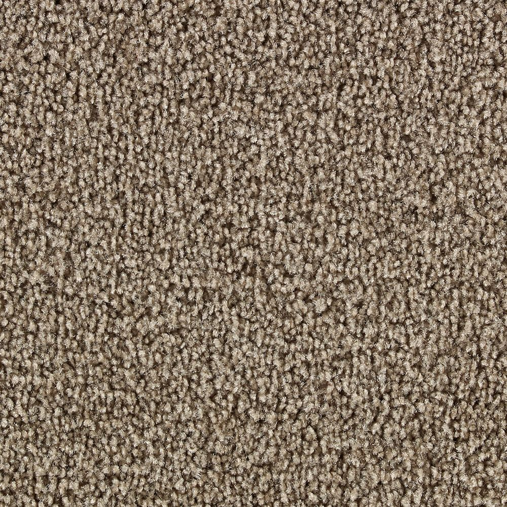Slug Trail On Living Room Carpet: Martha Stewart Living Biltmore I Snail Shell Carpet