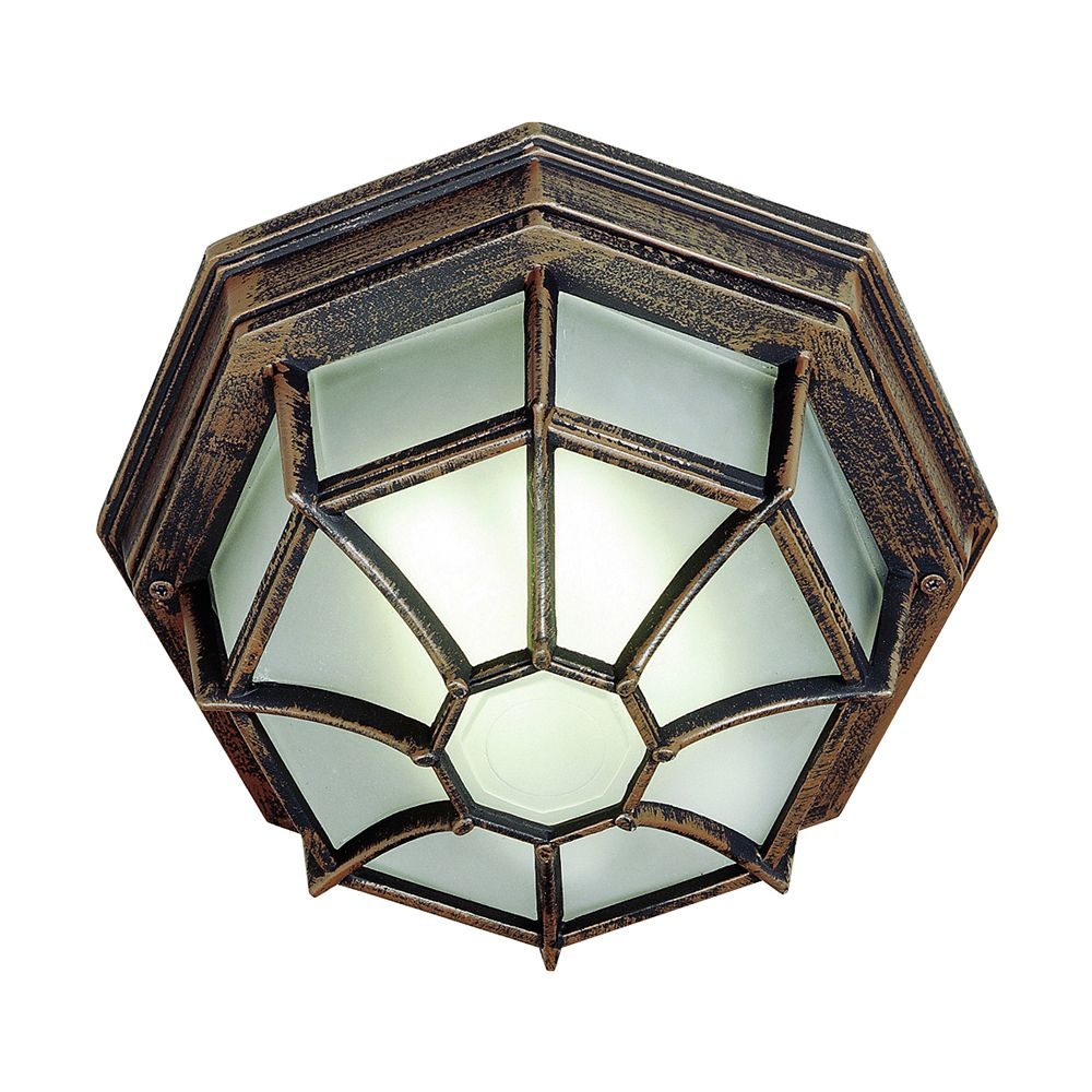 Rust Web 9 inch Ceiling Light