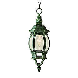 Bel Air Lighting Lanterne suspendue à fleuron en forme de feuille, vert mousse, 50,80 cm (20 po)