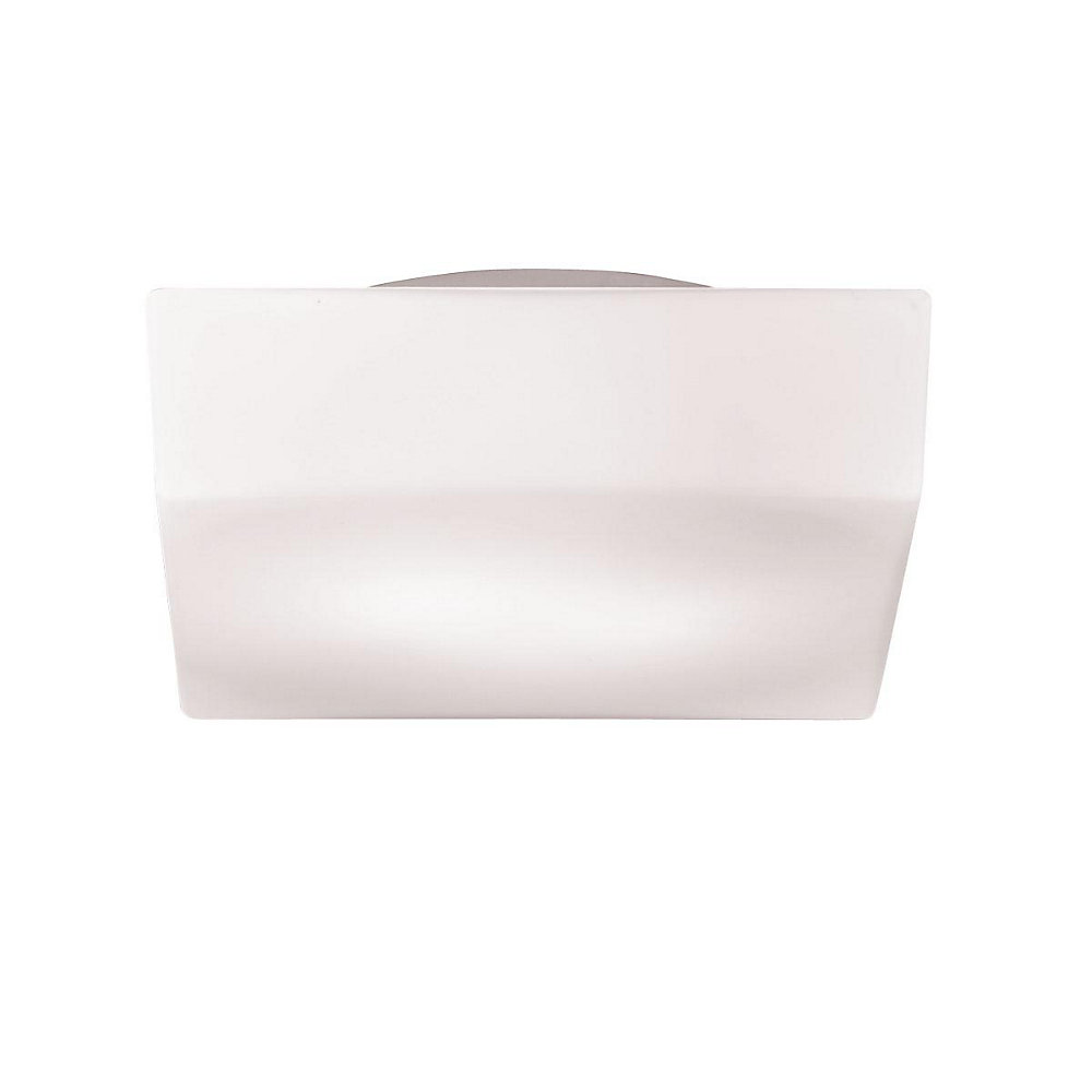 Amata Collection 1-Light Frost White Flush Mount