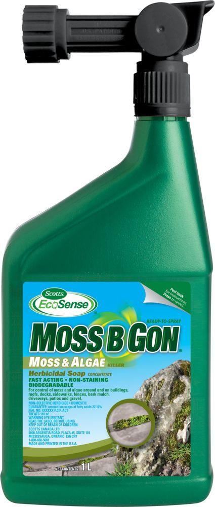 Ecosense Moss B Gon 1 L Ready To Spray
