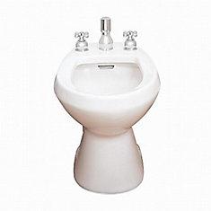 Bidet Toilets Amp Bidet Seats The Home Depot Canada