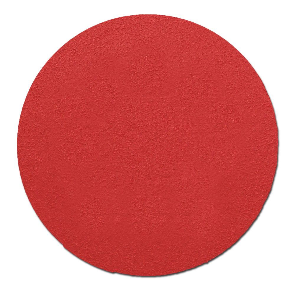 6-inch Premium Sanding Discs (40 Grit)