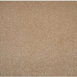 Cam Living 19.69 Inch x19.69 Inch Taupe Vision Carpet Tile (26.9 Sq.ft./case)