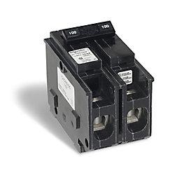 Schneider Electric - HomeLine Disjoncteur enfichable Homeline de 100A bipolaire