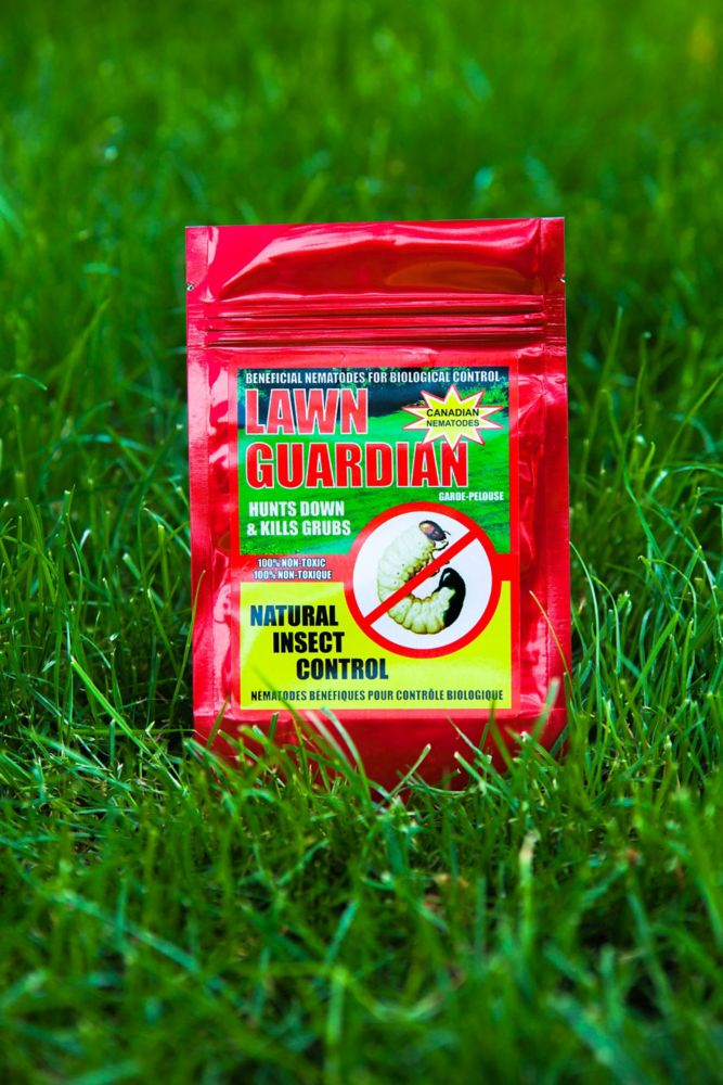Natural Insect Control -Lawn Guardian