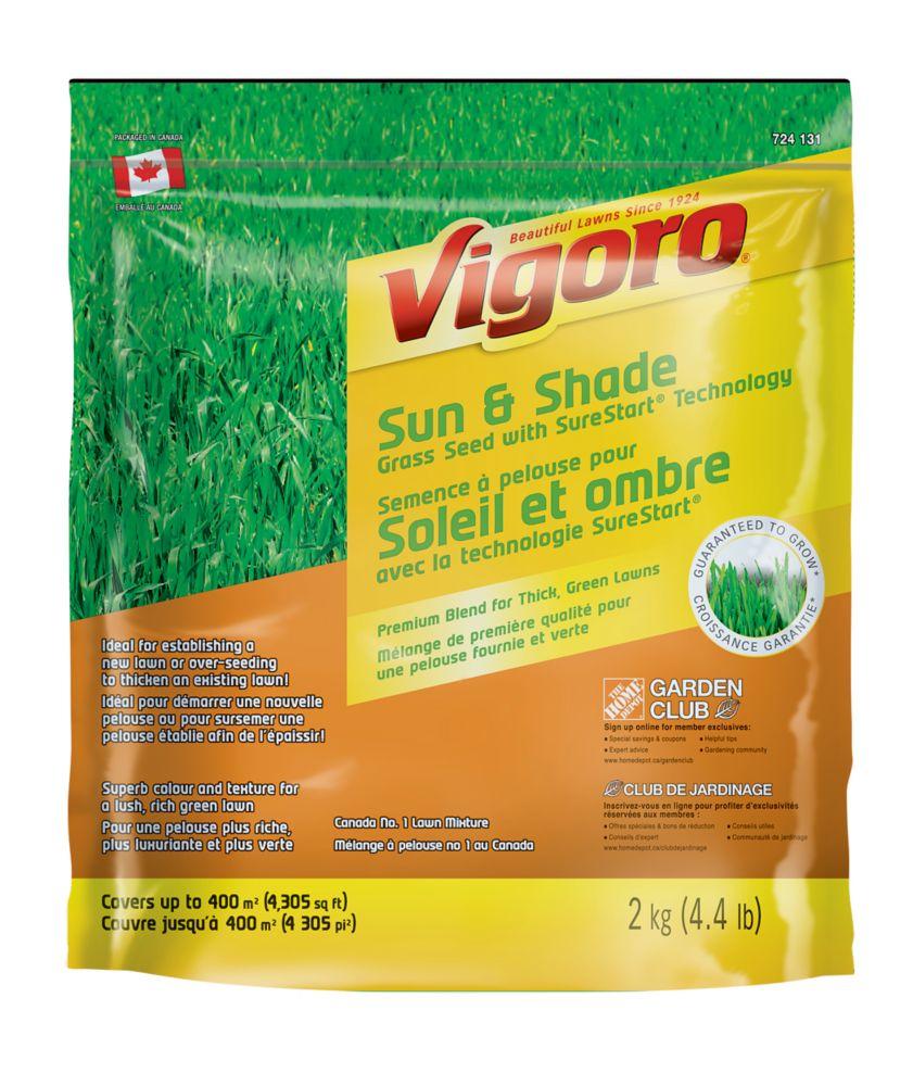 Semence à pelouse pour soleil et ombre avec la technologie SureStart Vigoro 2 kg