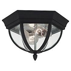 2 Light Black Incandescent Outdoor Ceiling Fixture