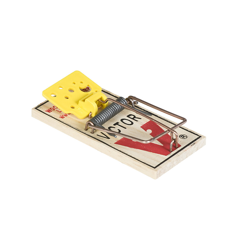 Easy Set Mouse Trap 4 Pack