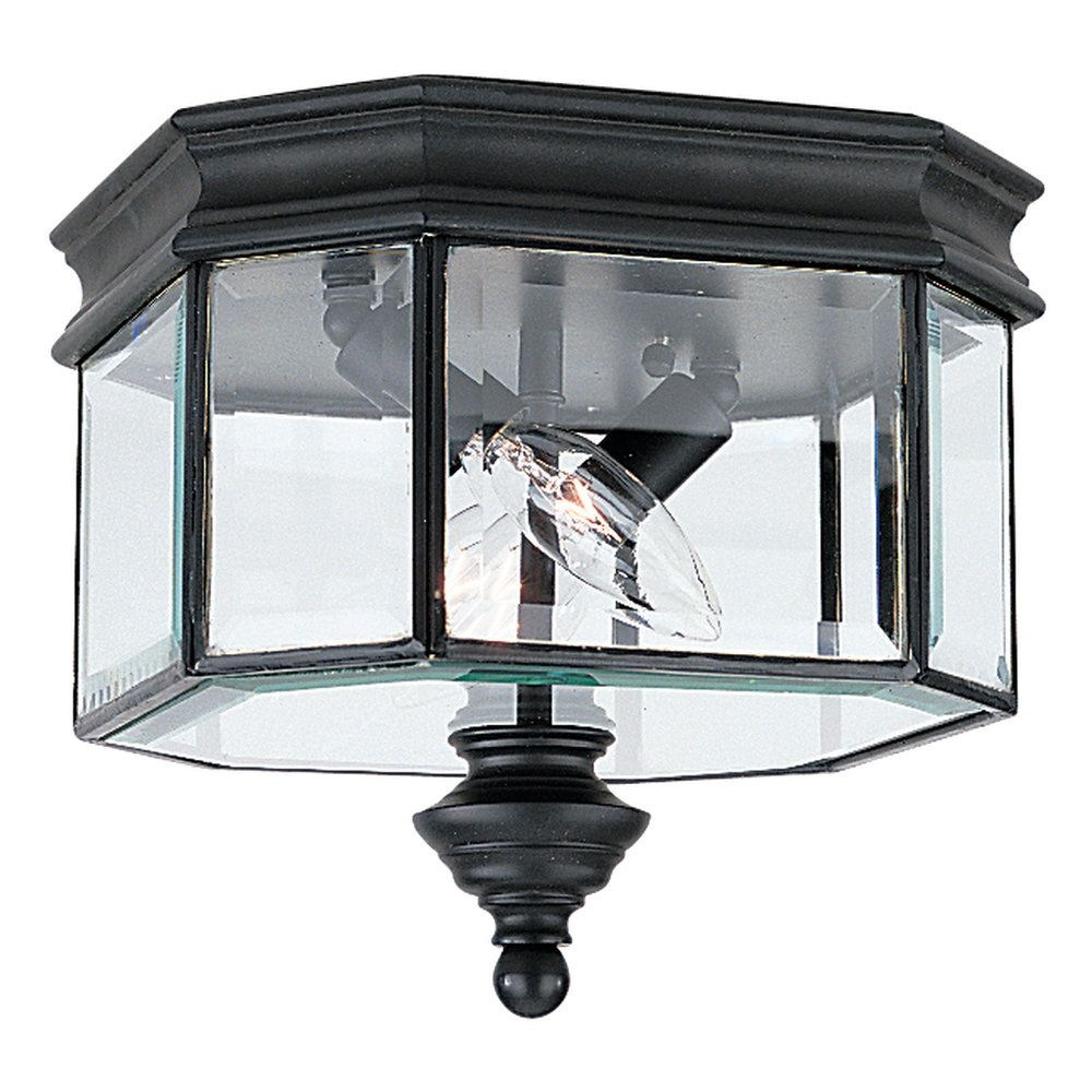 2-Light Black Outdoor Ceiling Fixture