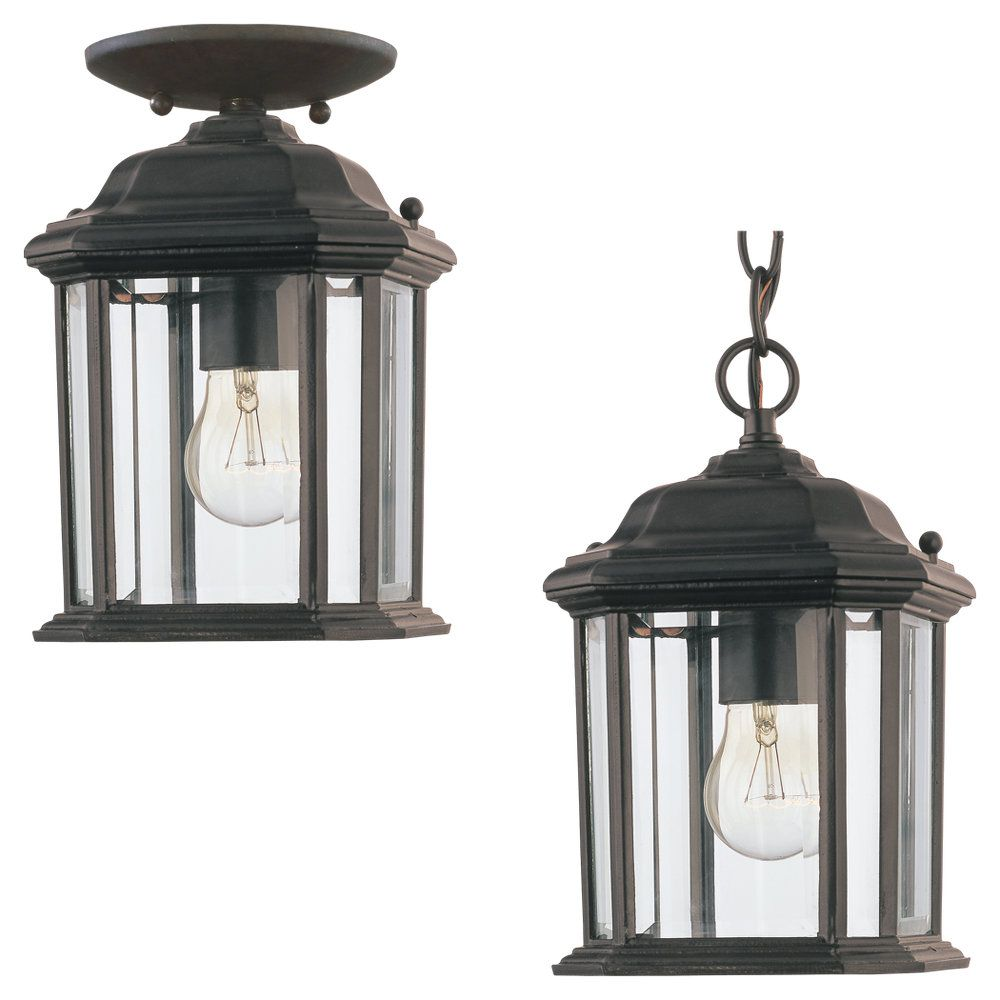 1 Light Black Incandescent Outdoor Pendant