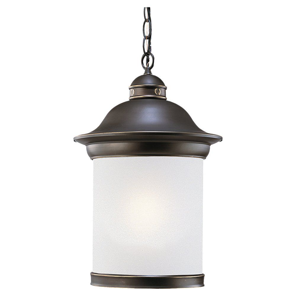 Sea Gull Lighting 1 Light Black Outdoor Pendant
