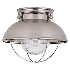 1-Light Brushed Stainless Outdoor Ceiling Fixture