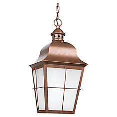 1 Light Weathered Copper Fluorescent Outdoor Pendant