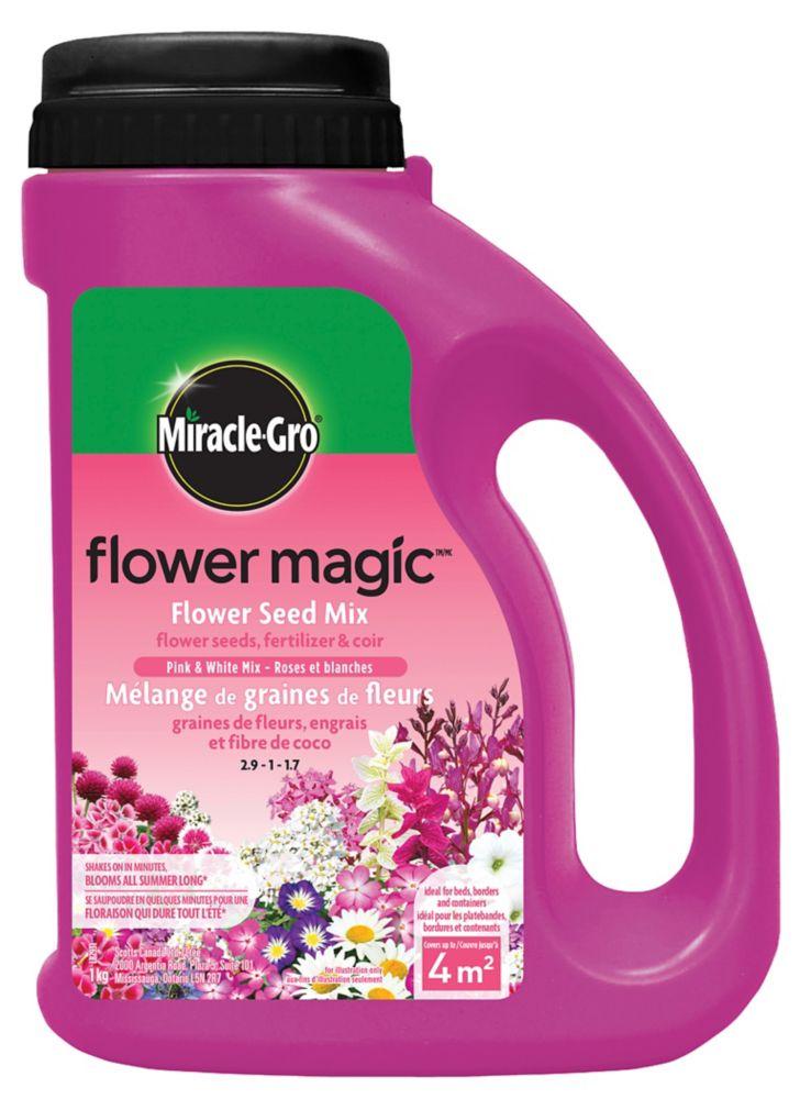 Flower Magic  Fleurs roses et blanches 1 kg