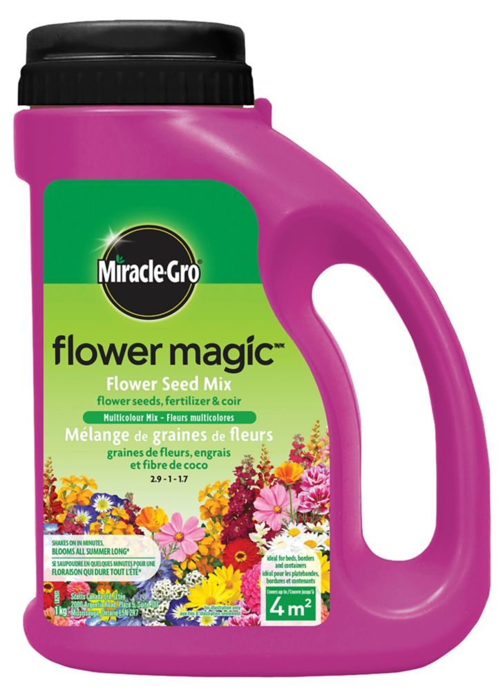 Flower Magic Fleurs multicolores 1 kg