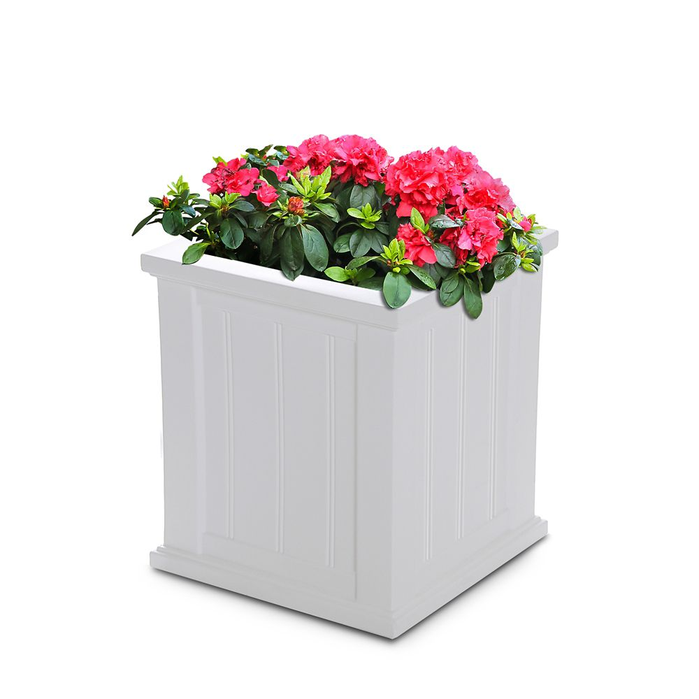 Mayne Cape Cod 16-inch x 16-inch Planter in White