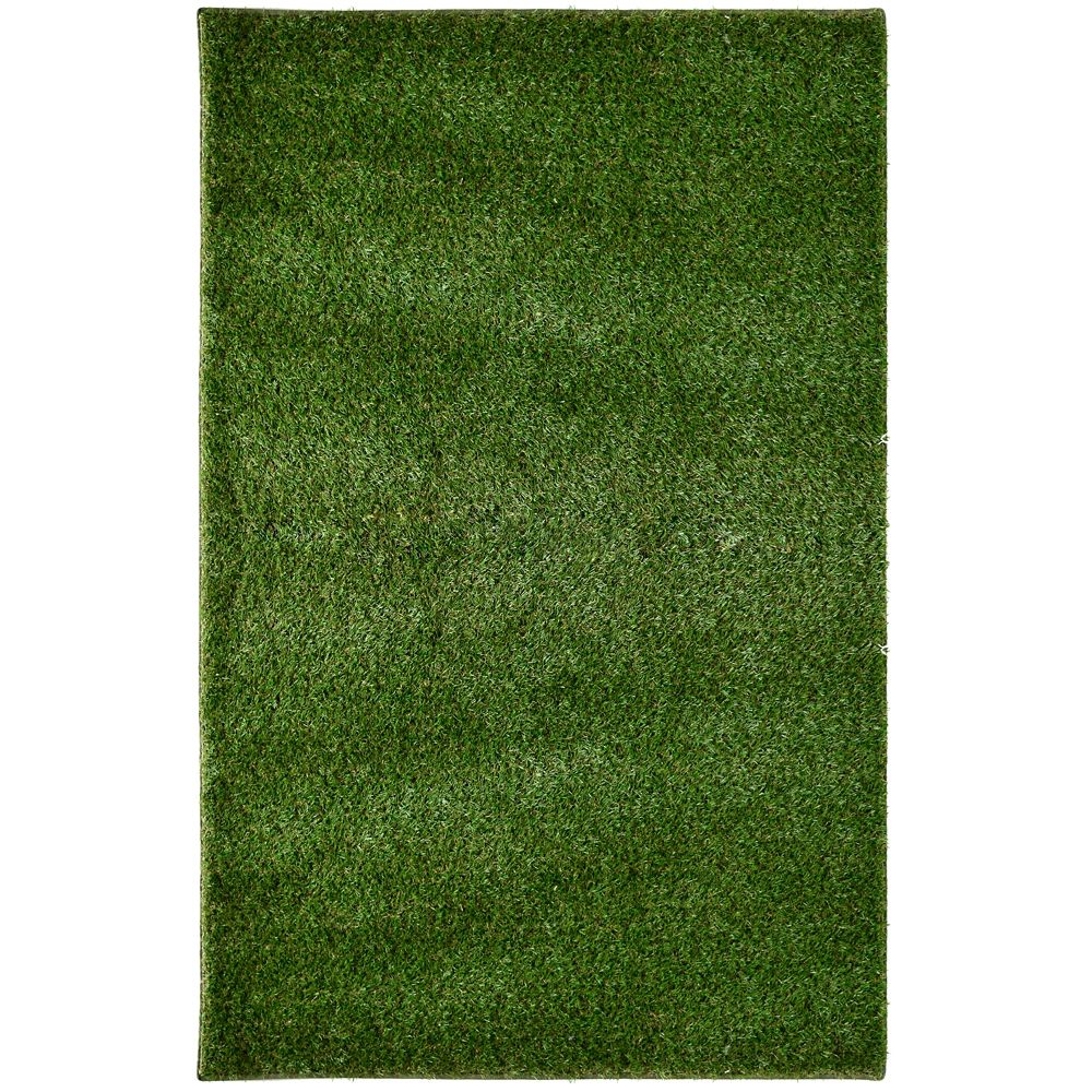5 ft. x 7 ft. Outdoor Shag Area Rug in Green Grass