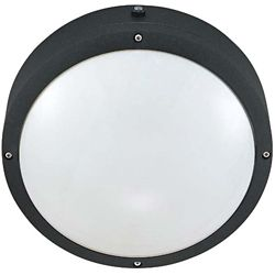 Glomar Hudson Matte Black 2-Light 13 with 10 Inch Round Wall / Ceiling Fixture