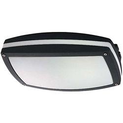 Glomar Hudson Matte Black 2-Light 13 watt Rectangular Wall / Ceiling Fixture