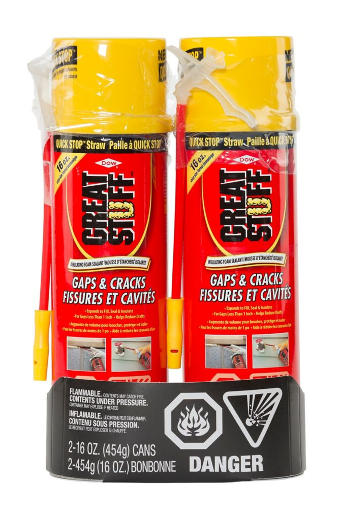 GREAT STUFF Gaps & Cracks Insulating Foam, 454 g (2-Pack)