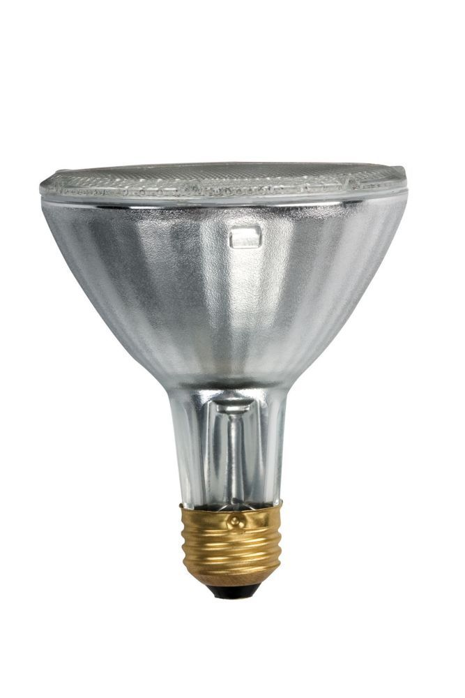Halogen 50W PAR30 Flood