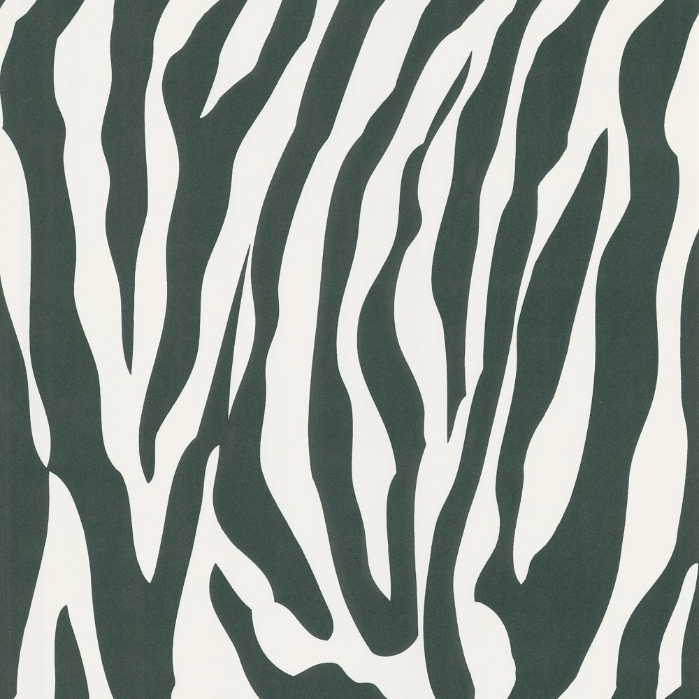 National Geographic Zebra Skin Wallpaper