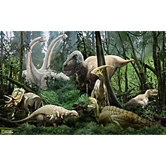 National Geographic Dinosaur Mural